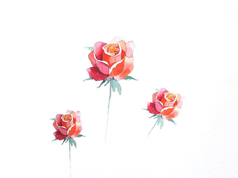 Tutoriel spécial Saint-Valentin : réaliser une rose à l'aquarelle